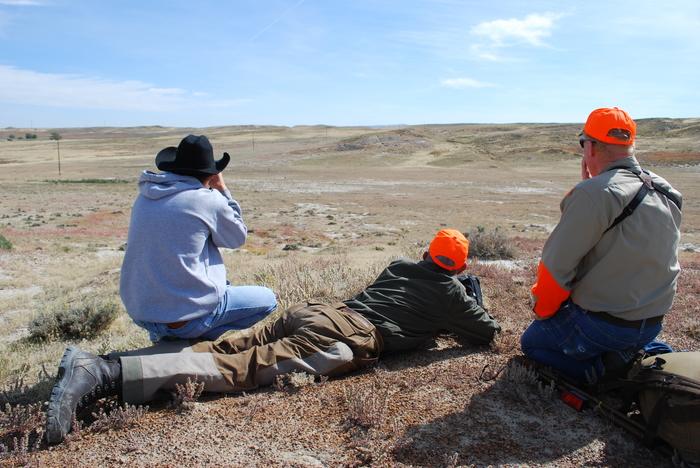 Wyoming prairie dogJPG