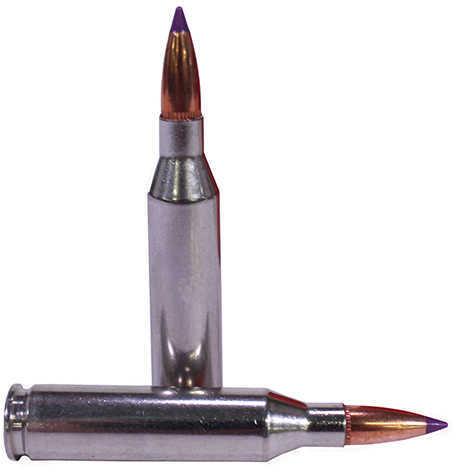 Federal 243 Winchester 70 Grain Nosler Ballistic Tip Per 20 Ammunition Md: P243F