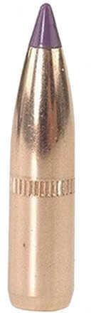 Nosler 6mm/243 Caliber 90 Grains Spitzer Ballistic Tip Per 50 Md: 24090 Bullets