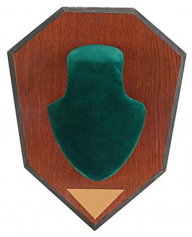 Allen Antler Mounting Kit Antler Mounting Kit W/ Skull Cover, Green Md: 562