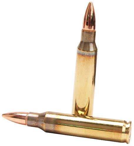 Fiocchi 223 Remington 55 Grain FMJ 50 Rounds Ammunition