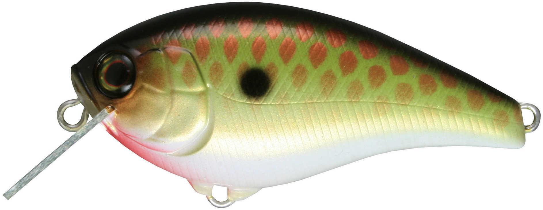"Jackall Lures Aska60 SR Hard Crank Bait Lure 2 1/2"" Body Length, 4' Depth, 3/8 oz, Bronze Green Shad, Per 1 Md: JASK60SR"