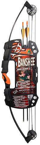 Barnett Banshee Intermediate Compound, 25 lb Md: 1075