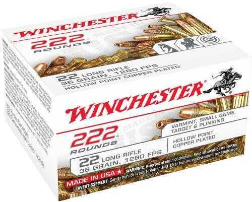 Winchester Bulk Pack 22 LR 36 Grains CPHP 222/Bx
