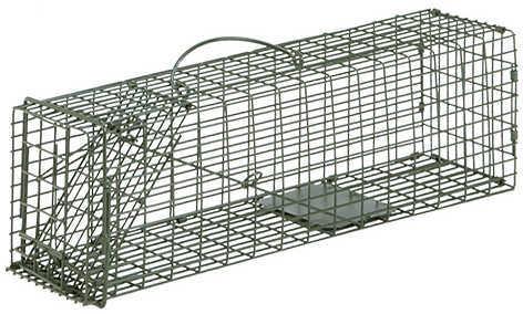 Duke Cage Trap Squirrel 16X5X5 1Dr
