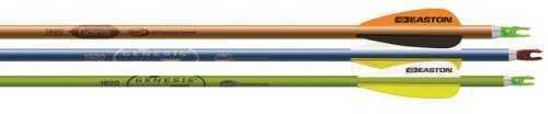 Easton Genesis V2 Arrows Purple/Black/Blue/Green 1820 72 pk. Model: 925548