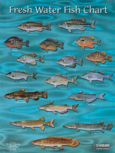 Standard fish chart fresh water freshwater fishing baits for Freshwater pond fish
