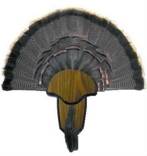 Hunters Specialties Turkey Tail/Beard Mounting Kit Md: 00849
