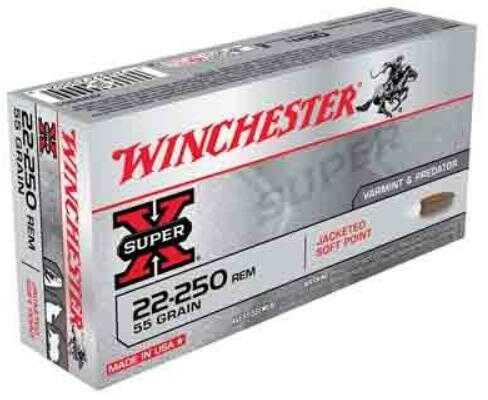 Winchester Ammo Super-X 22-250 55Grain PSP 20-Pack